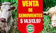 CONVOCATORIA PARA LA VENTA DIRECTA DE SEMOVIENTES